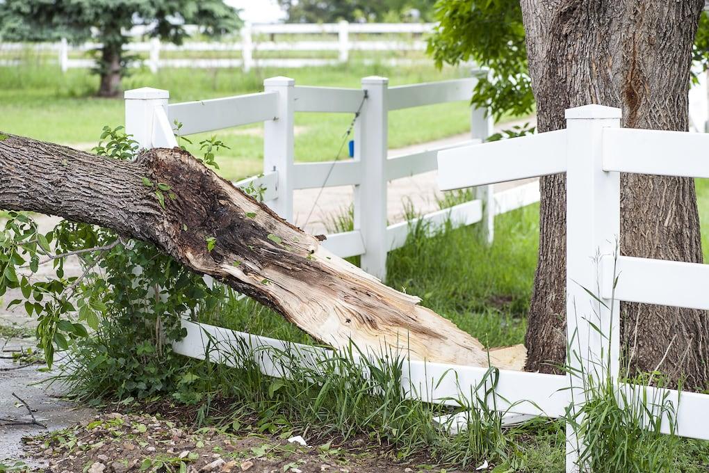 lightening damage affecting homeowner's insurance