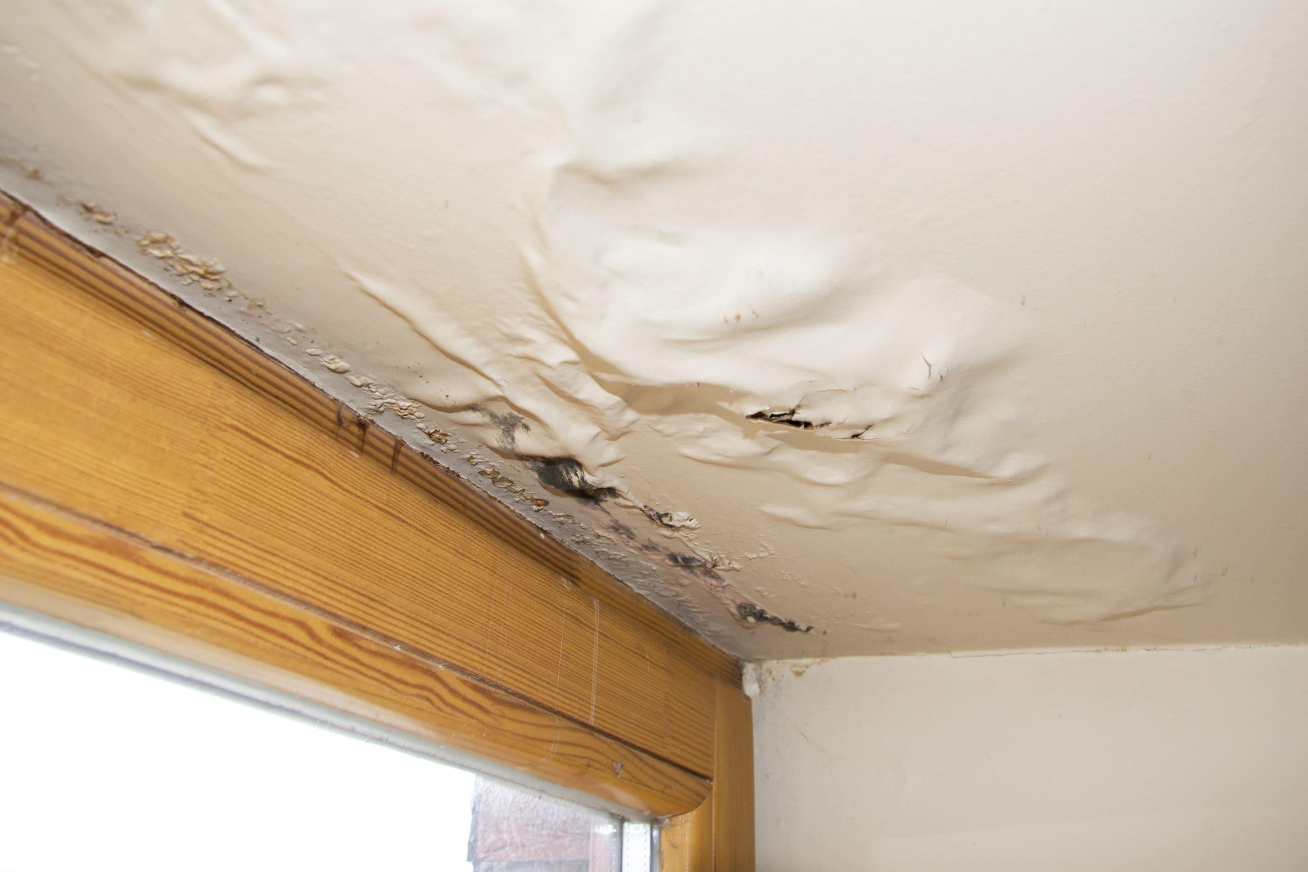 roof leak ceiling sagging