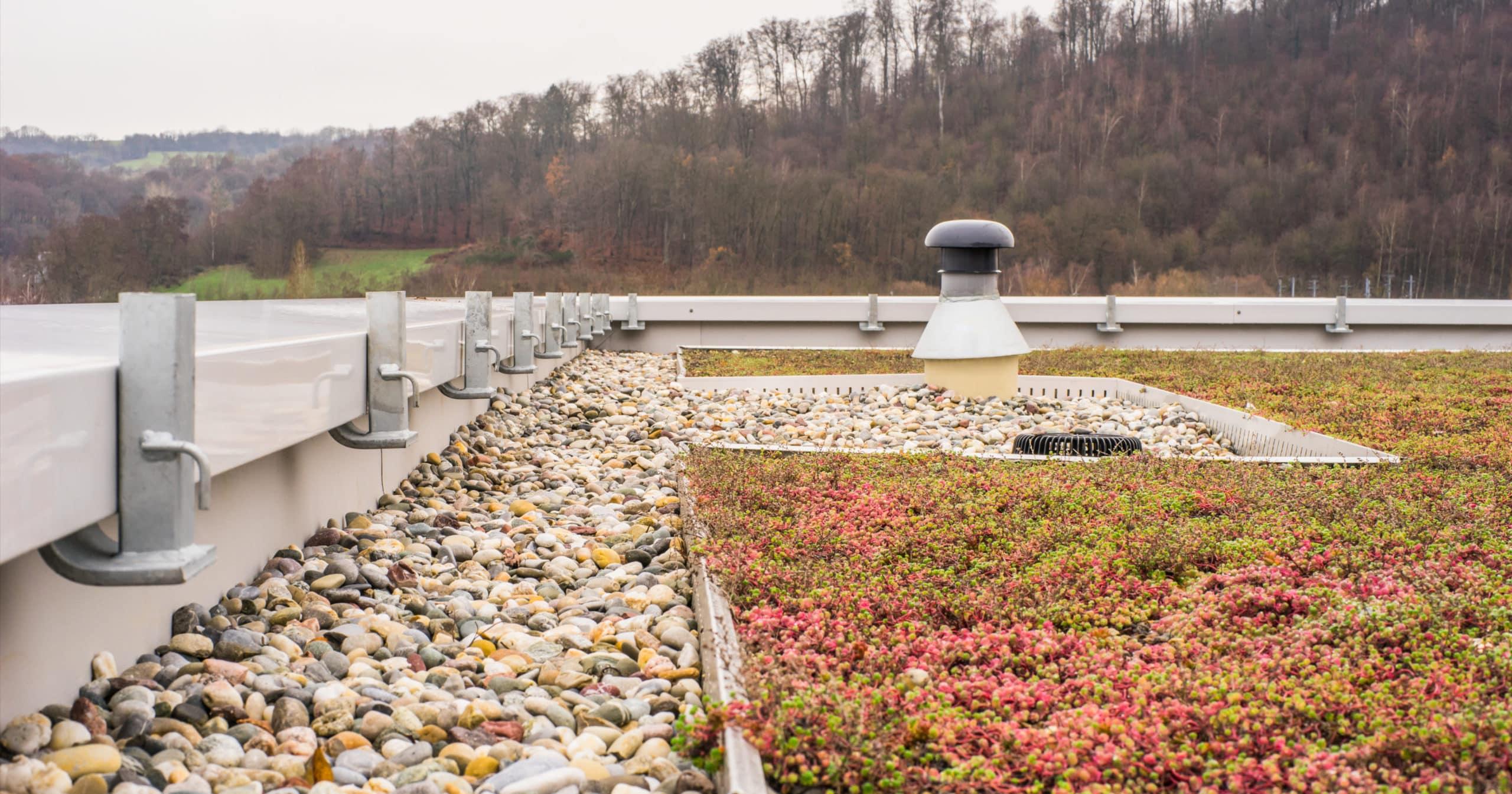 green roof rocks